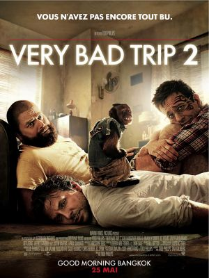 Very Bad Trip 2 - critique